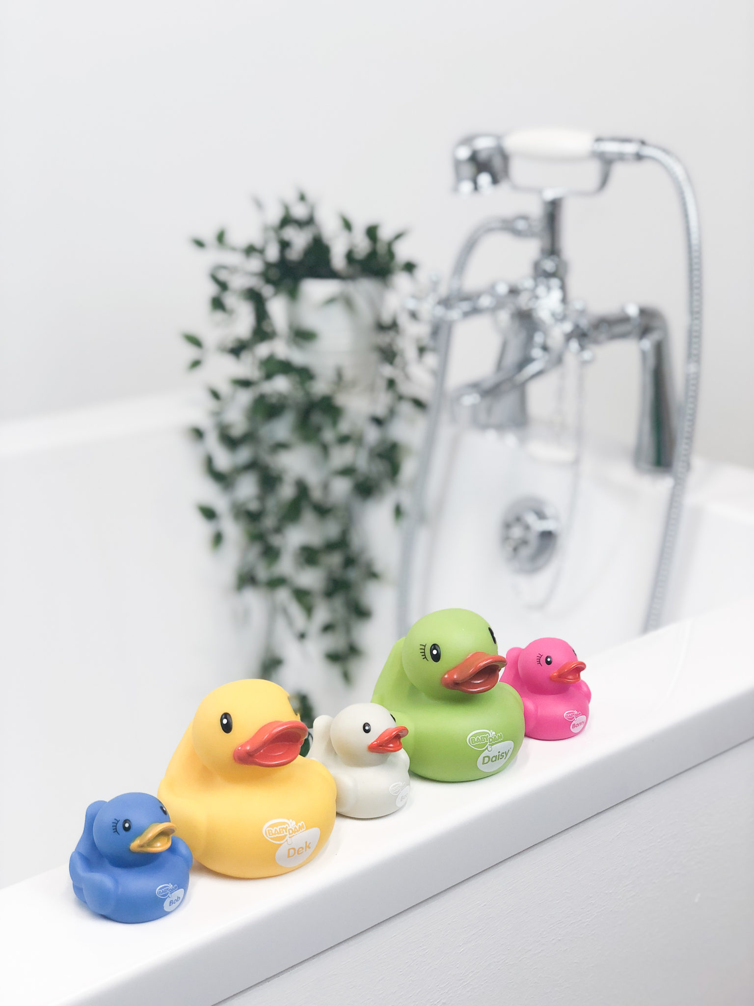 Our BabyDam Ducks Have Had A Revamp…No Soggy Bottoms Here